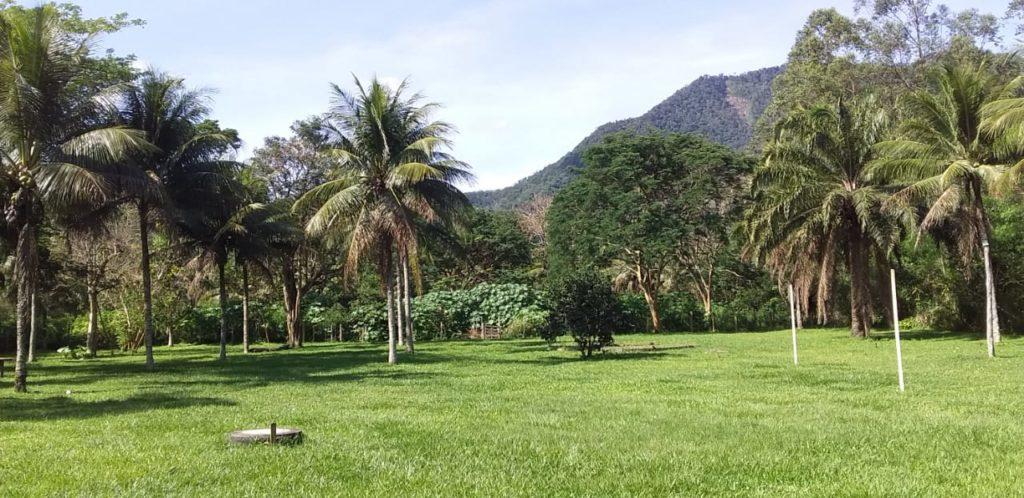 Marja osti maatilan Brasiliasta ja elää nyt kookospuiden keskellä